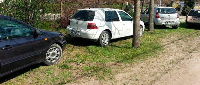Zöldterület parkolás